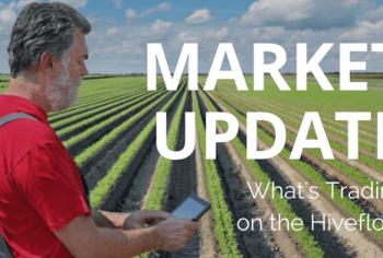 Market Update – December 2017